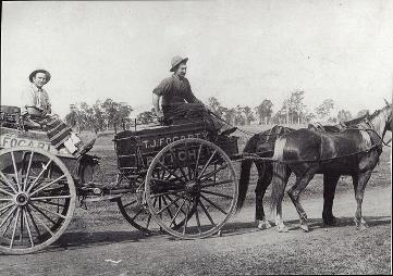 TJ Fogarty Buthchery horse and cart, weston