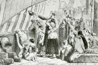 Drawing - Government Emigrants, 1852